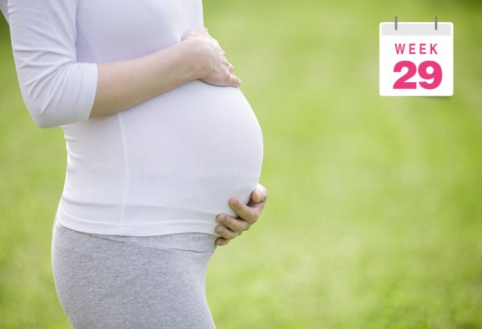 29 Weeks Pregnant Women
