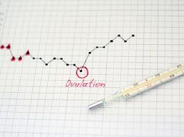 A calendar marking the ovulation day