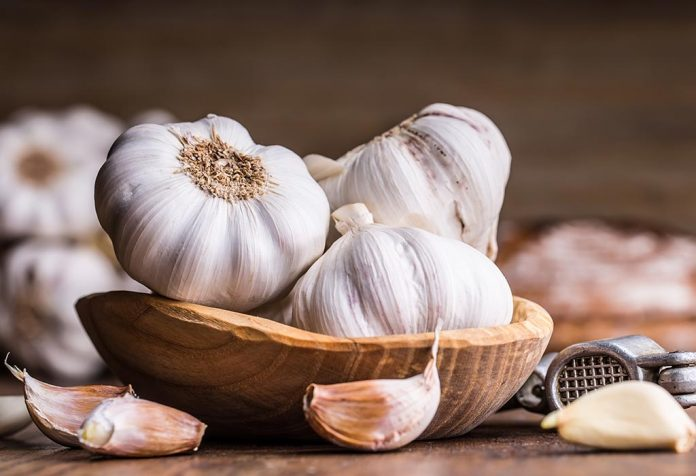 Garlic for Babies - Benefits and Recipes